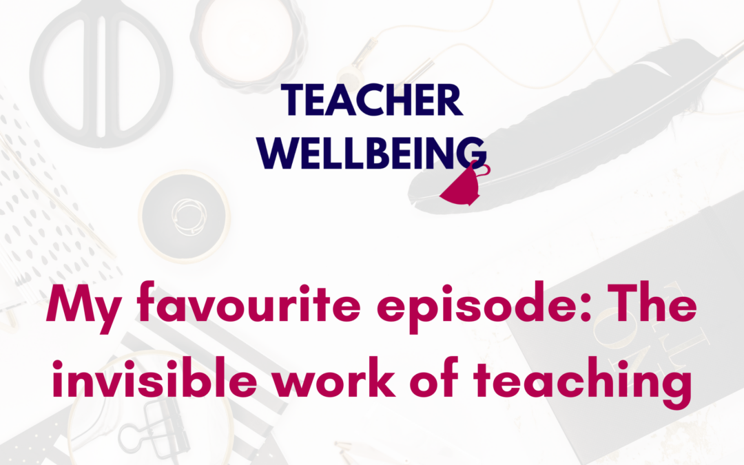S08 E05: My favourite episode: The Invisible Work of Teaching (Replay)
